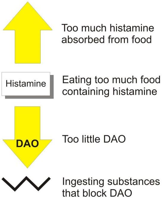 Histamine Intolerance: The Game Changer in Chronic Illness