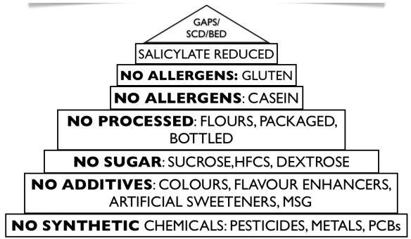 Autism Diet Pyramid – Dr. John Gannage
