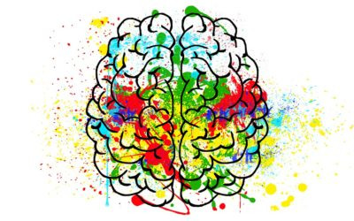 Autism, The Gut, and the Brain: Part Two