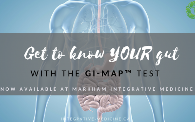 Get To Know Your Gut with the GI-MAP Test