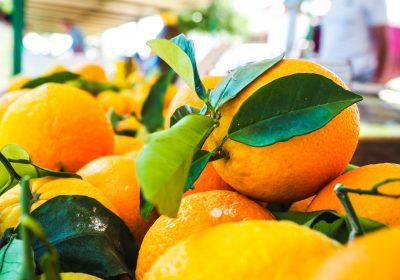 Spotlight on Vitamin C