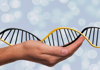 Fundamentals of Functional Medicine: Epigenetics